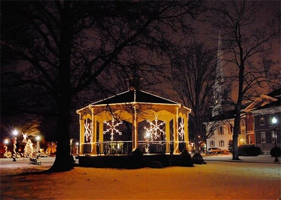 O'Brien set to light Christmas tree on Green Nov. 26
