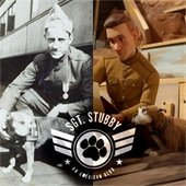 Vets Museum hosting 'Sgt. Stubby' showing at local theater